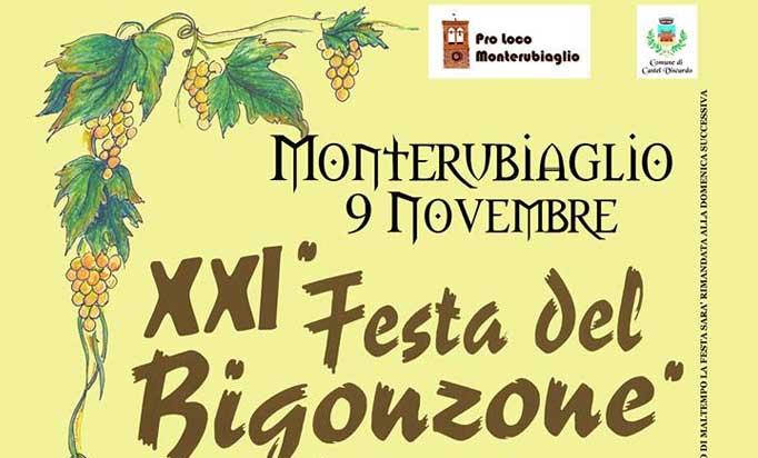 bigonzone-2014