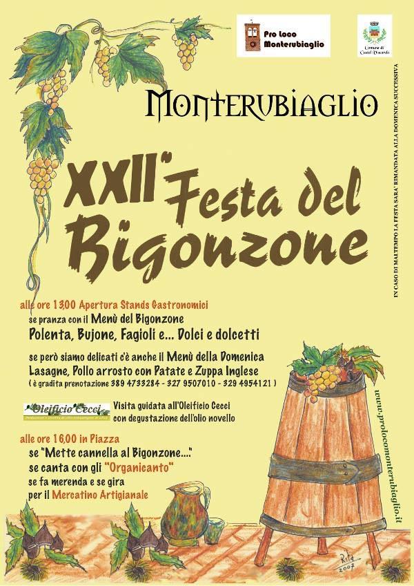 bigonzone-2015