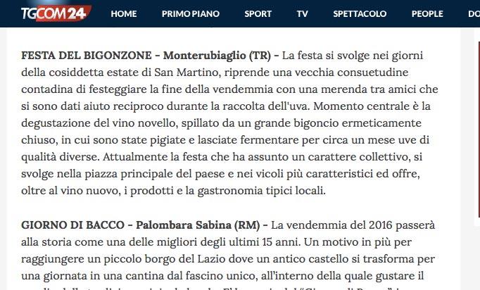 tgcom-bigonzone-interna