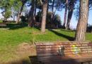Vandali in azione a Castel Viscardo Sottratto un melograno dal parco