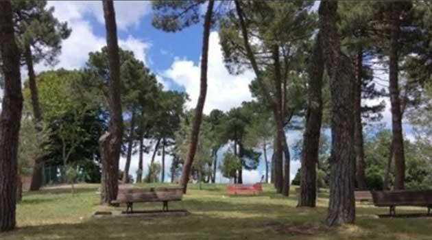 Il Parco del Pinaro di Castel Viscardo è ufficialmente LUOGO DEL CUORE del FAI